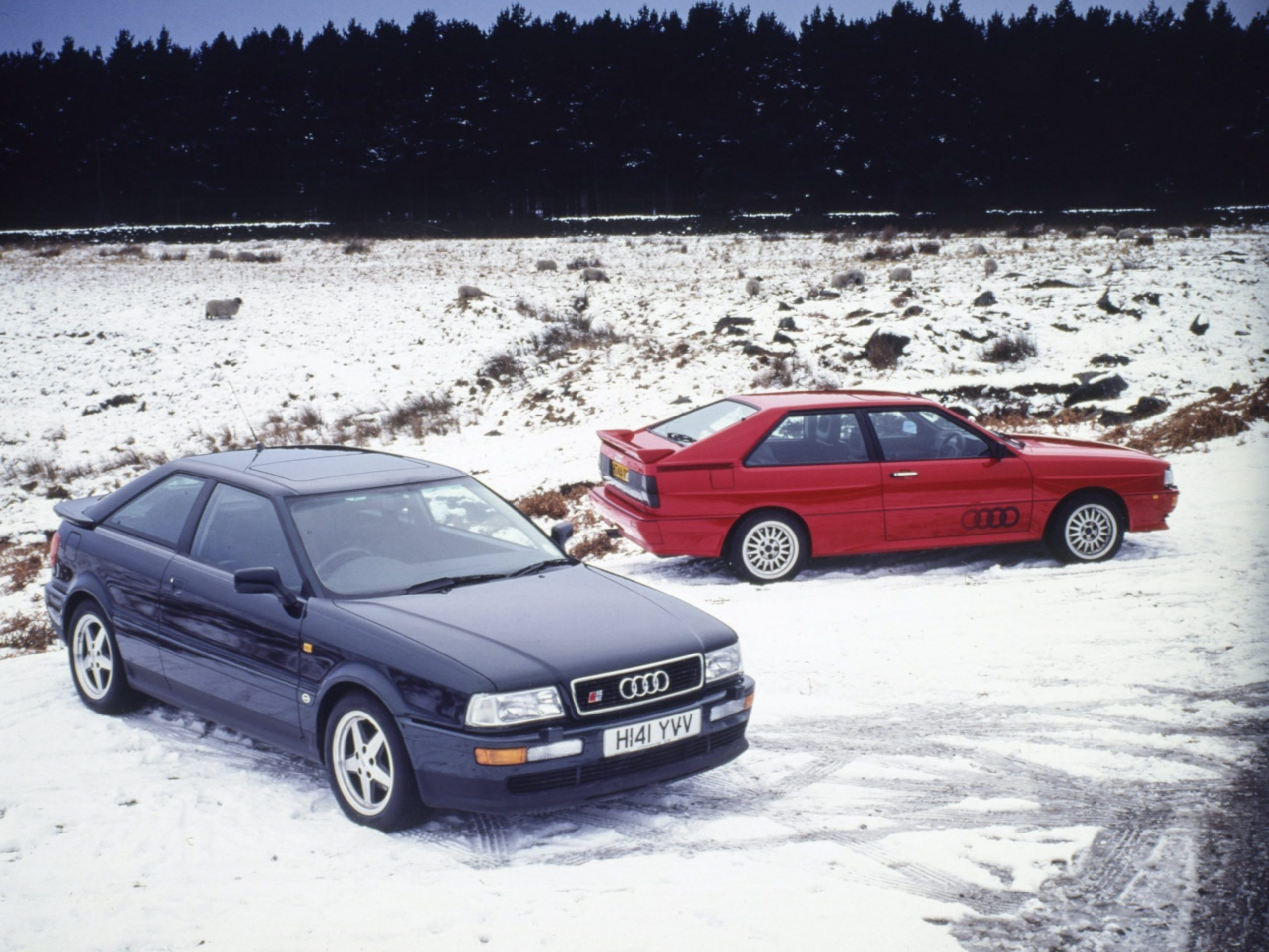 Winter warmers: 7 modern classics for all-weather fun