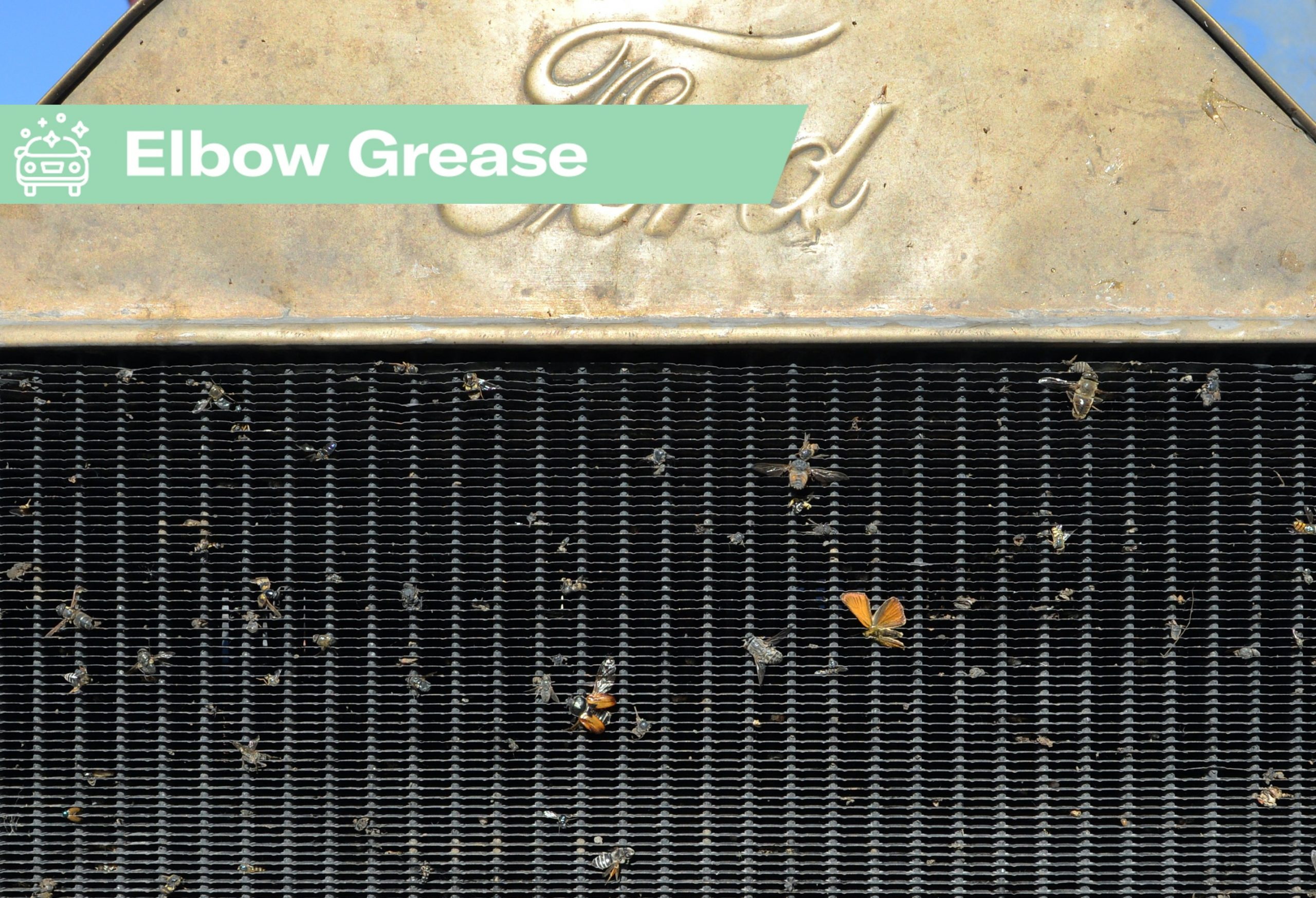 Elbow Grease: The secrets to removing bugs and flies from the front of a car